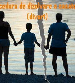 Procedura de dizolvare a casatoriei (divort)