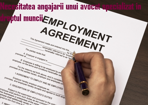 avocat specializat in dreptul muncii