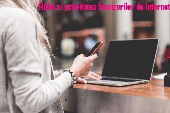 Rolul si activitatea furnizorilor de Internet